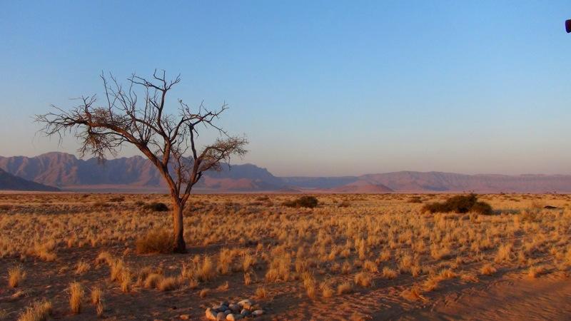 Unsere Aussicht von unserer Terrasse im Desert Camp